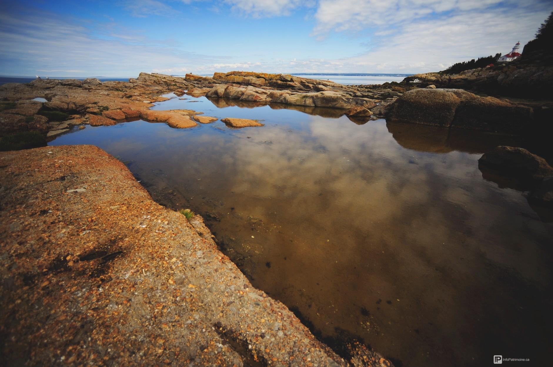 littoral, île du pot à l'eau-de-vie, rivière-du-loup (Auteur : Ville RDL)